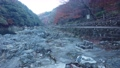 晩秋の保津峡を散策する 73265393