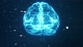 Technology Artificial intelligence (AI) brain animation digital data concept. Big Data Flow Analysis. Deep Learning Modern Technologies. Futuristic Cyber Technology Innovation. Fast digital network. 73298529