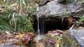 交野市 私市 冬の「尺治の豊水潤の滝の下」 73621494