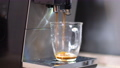 Close-up of glass cup with coffee machine preparing espresso or americano. Automated device pouring hot tasty drink in cup indoors. No people. 73707885