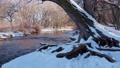 winter scenery of Cache la Poudre River at Fort Collins 73740176