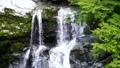 【대 轟の滝] (슬로우 모션) 도쿠시마 현 나카 군 나카 정 沢谷 73767246