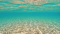 Clear water and sunlight near a sandy beach in Egypt. Red sea. Vacation at sea. 73837865