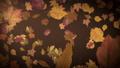 Autumn leaves falling slowly on defocused background 73843299