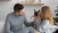 A couple in love with their dog in the living room 73880974