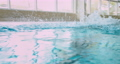 Disabled amputee athlete butterfly swimming in indoor pool 73906208
