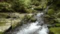 계곡을 흐르는 계곡 73927670