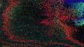 Casual data glitch shimmering cyberpunk noisy background. 74134299
