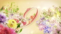 A 10-second countdown of glittering colorful spring flowers in full bloom 74454756