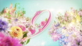 A 10-second countdown of glittering colorful spring flowers in full bloom 74454763