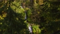 waterfall in the forest, bird's eye view 74501186