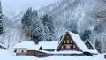 Suganuma Gassho-zukuri Village (Winter) 74555071