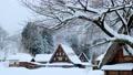 Suganuma Gassho-zukuri Village (Winter) 74555074