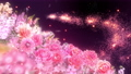美麗的花園,柔和的粉紅色花朵盛開 74579026