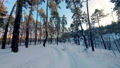FPV drone view. Flight in the winter forest at sunset 74622597