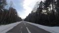 冬の川と森 74775823