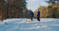 two sisters are walking with a small dog in a winter forest  74796334