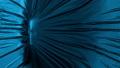 Skull Revealing Under A Blue Silk Fabric 74981561