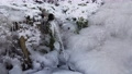 source of fresh water with an abundant stream. Everything around is frozen and icy. The season is winter. 75053392