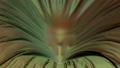 Skull Revealing Under A Velvet Fabric 75095068