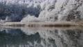 長野縣中牧湖覆蓋著白霜的美麗湖畔 75241026
