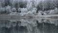 長野縣中卷湖的湖邊和水面覆蓋著白霜 75241027