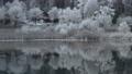 長野縣中卷湖,倒映在白霜覆蓋的湖邊 75241028