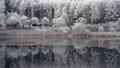 長野縣中卷湖的白霜湖畔 75241030