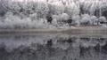 長野縣中卷湖的白霜湖畔 75241031