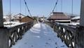 長野縣白馬村與萬向架一起在大ide公園移動和拍攝懸索橋時行走 75241195