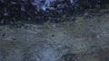 슬로우 모션으로 볼 물방울에 치유되어 75277089
