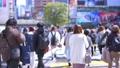 도쿄의 도시 풍경 오후 시부야 스크램블 교차로를 오가는 사람들 75456040