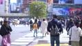 도쿄의 도시 풍경 오후 시부야 스크램블 교차로를 오가는 사람들 75456041