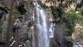 Tsukechi Gorge, Nakatsugawa City, Gifu Prefecture Kannon Falls with winter snow 75491363
