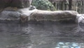 日本溫泉和露天浴池的形象 75492563