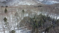 冬の支笏湖周辺の空撮映像(前進) 75586831