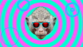 Minimal animation design. Funny Monkey. 75729176