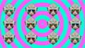 Minimal animation design. Funny Monkey. 75729177