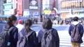 도쿄의 도시 풍경 시부야 스크램블 교차로를 오가는 사람들 75730823