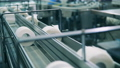 Many toilet paper rolls moving along the production line at a paper plant 75767435