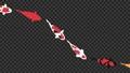 鯉魚循環動畫 75775776
