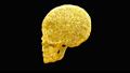 Gold Carved Skull With Alpha Matte, loop 75841873