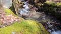 clear stream, river, mountain stream 75873338