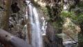 water fall, waterfall, clear stream 75873534