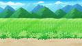 稻田 水稻 風景 75933617