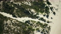 Drone aerial bird's eye view of grassy sand dunes on beach landscape 75959576
