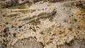 aerial view of bush desert 75959578