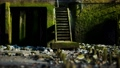 weathered wooden stairway leading onto rocky beach 75959580