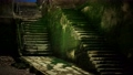 Old wall and stairs covered in moss 75960642