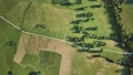 Aerial view of green fields 75960681